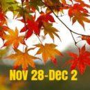 The Week Ahead: November 28-December 2