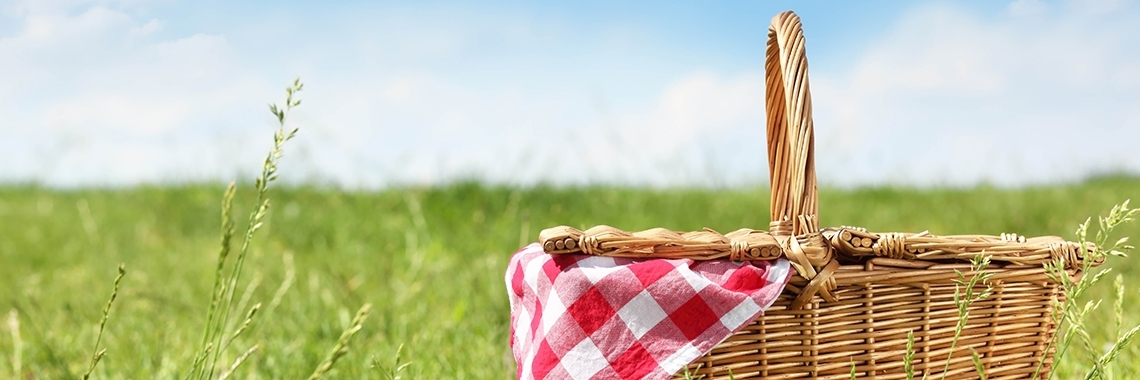 churchwide-picnic-home-page-banner